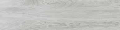 Gorbea gris